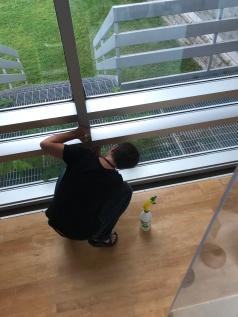 Window_0765